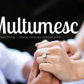 Jurnalul Recunostintei (11) – 13 – 19 Iulie Multumesc www.raduprisacaru.ro